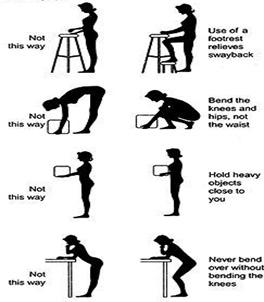 Low Back Pain D Chardaloumpas